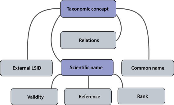 TAXONOMIC-TABLE